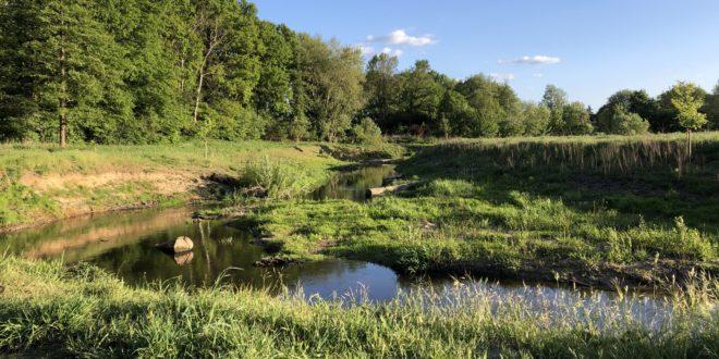 Natur– und Umweltschutz