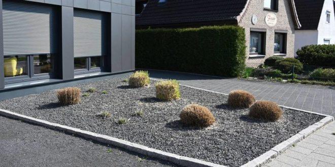 Nachteile von Schottergärten